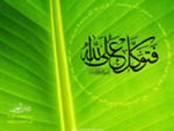 медицина пророка мухаммеда как похудеть